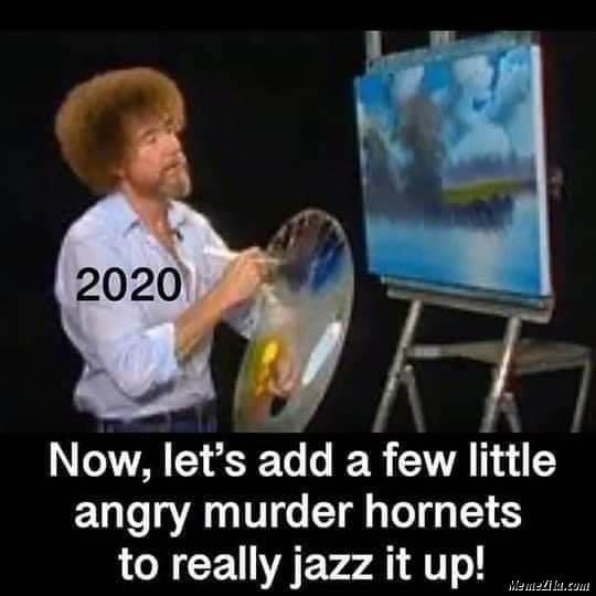 2020 Now we add a few little angry murder hornets really jazz it up meme