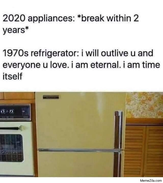 2020 appliances vs 1970s refrigerator meme