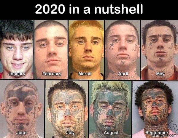 2020 in a nutshell meme