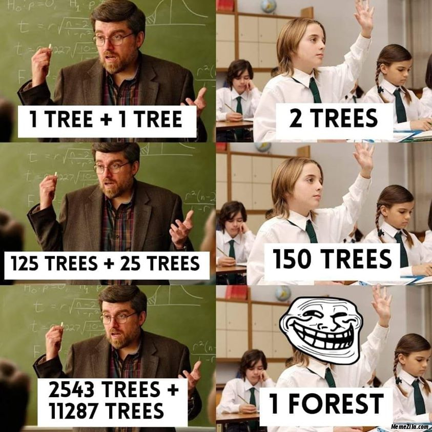 2543 trees plus 11287 trees is equal to forest meme
