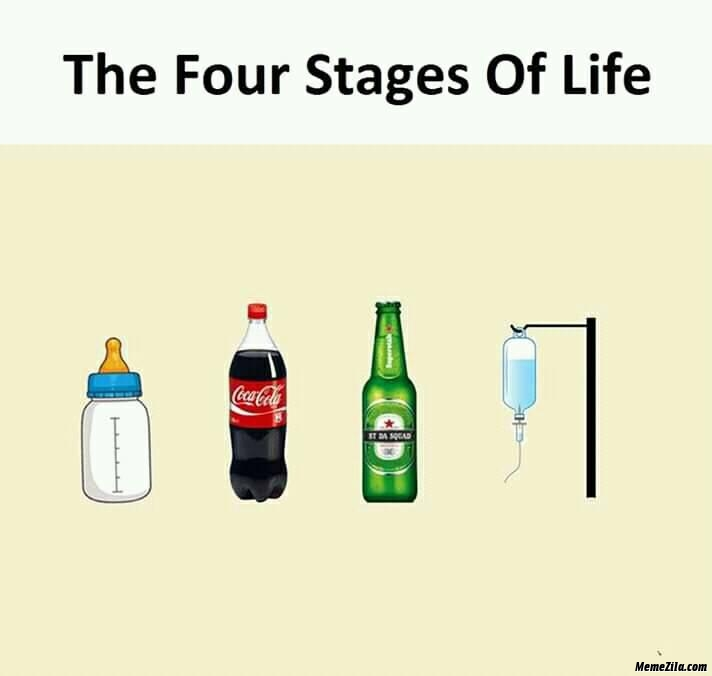 4 stages of life meme