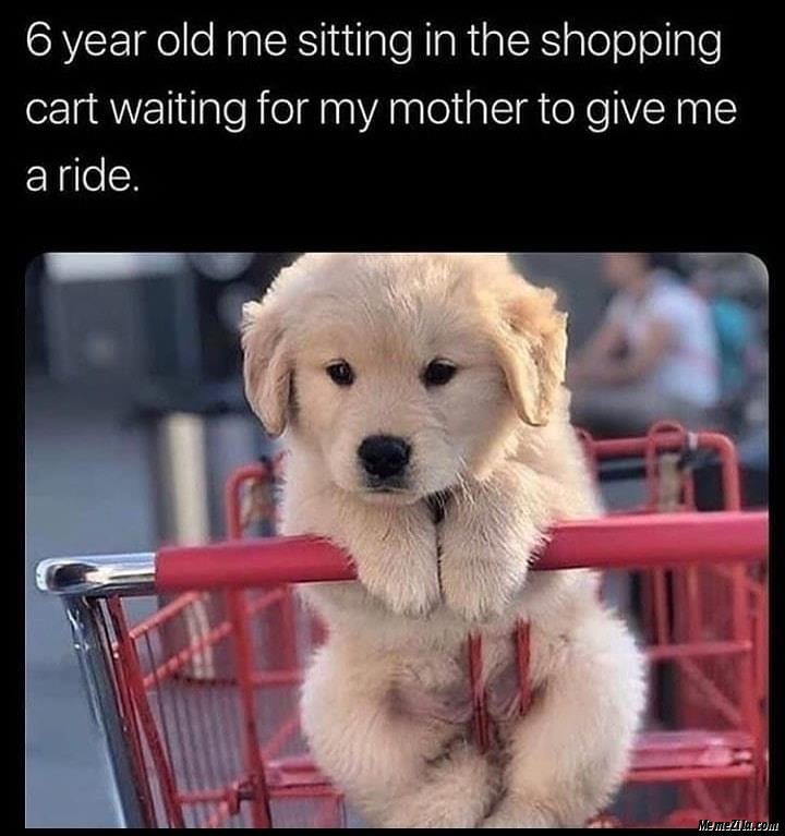 6 year old me sitting in shopping cart waiting for my mother to give me a ride meme