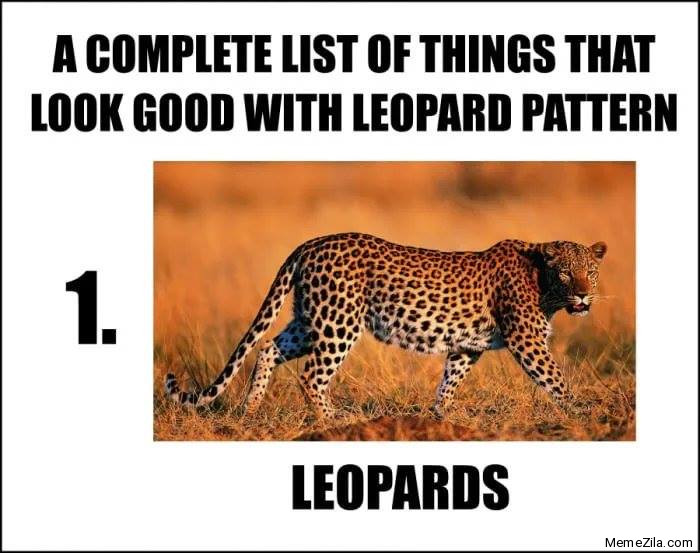 A complete list of things that looks good with leopard pattern 1 Leopards meme