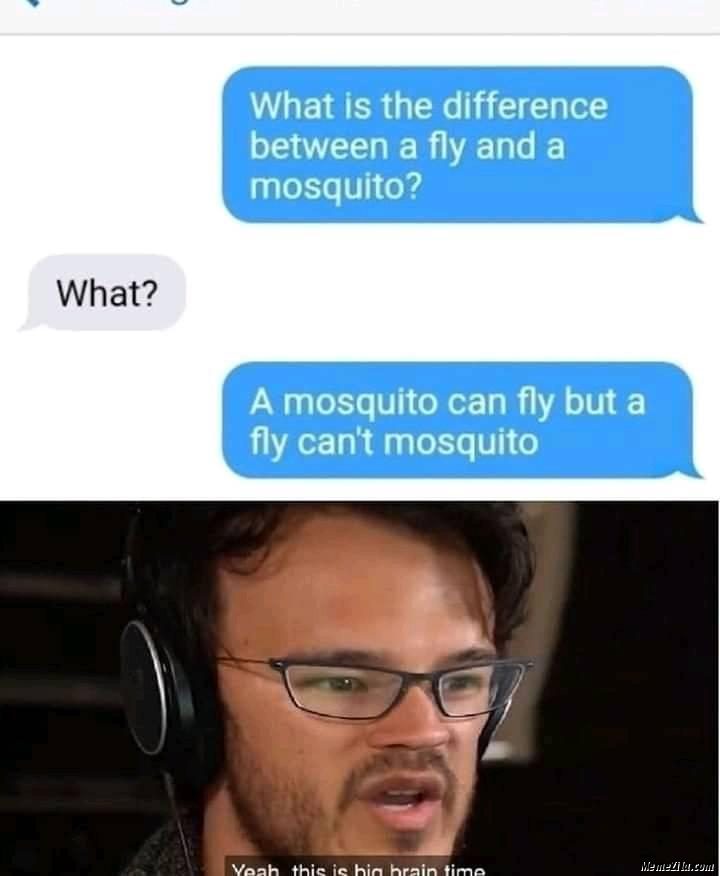 A mosquito can fly but fly cant mosquito meme