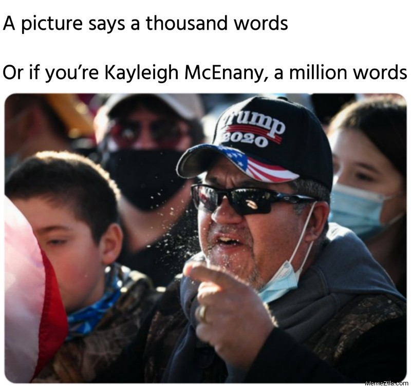 A picture says a thousand words Or if you are Kayleigh McEnany a million words meme