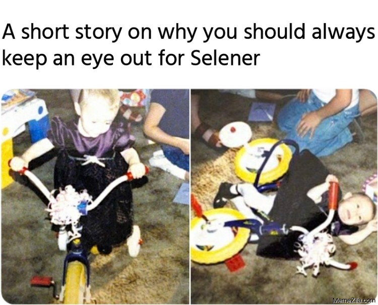 A short story on why you should always keep an eye out for Selener meme