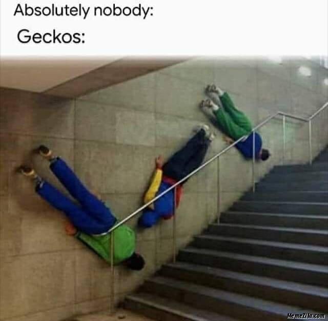 Absolutely nobody Geckos meme