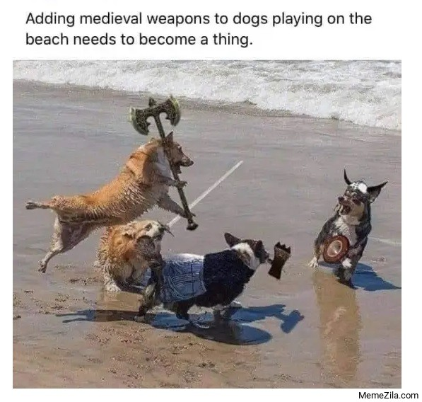 Adding medieval weapons to dogs playing on the beach needs to become a thing meme