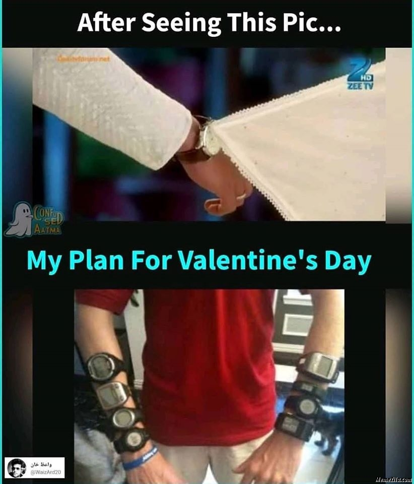 After seeing this pic my plan for valentines day meme