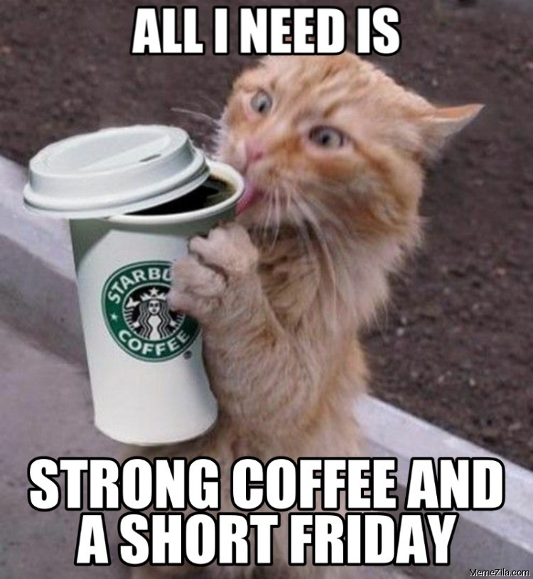 All I need is strong coffee and a short friday meme