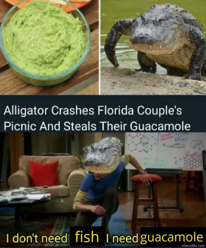 Alligator crashes Florida couples picnic and steals their glucamole I dont need fish I need glucamole meme
