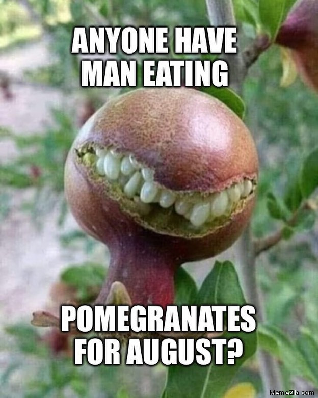Anyone have man eating pomegranates for august meme