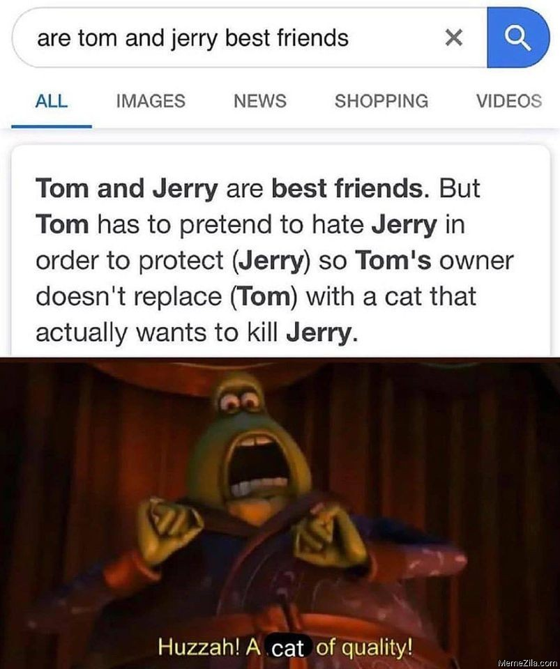 Are tom and jerry best friends meme