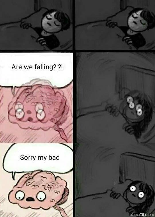 Are we falling Sorry my bad meme