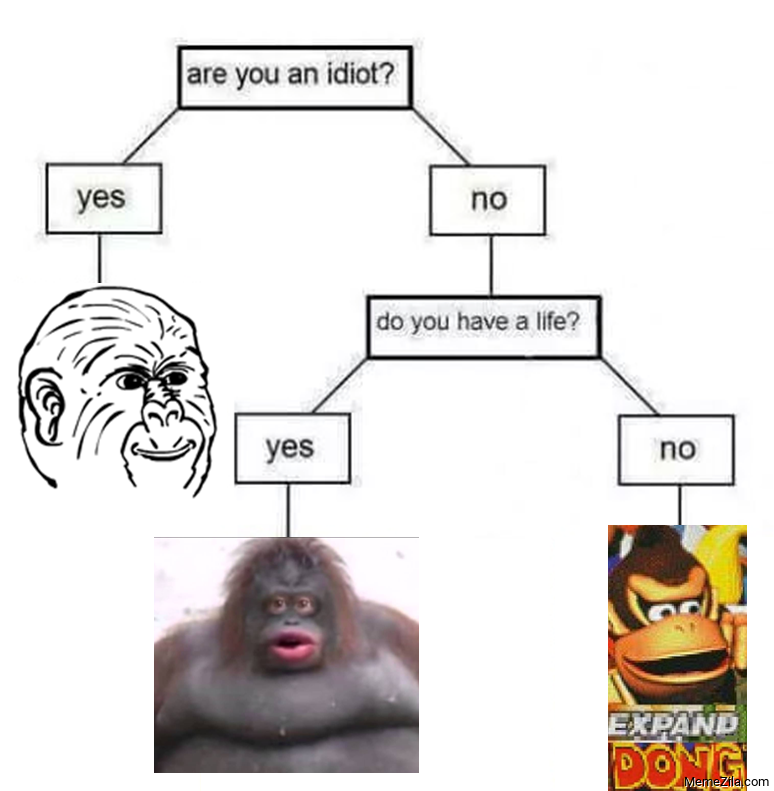 Are you an idiot Do you have a life meme