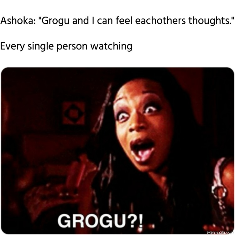 Ashoka Grogu and I can feel eachothers thoughts Every single person watching meme