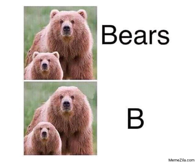 Bears B meme