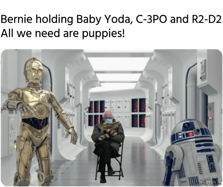 Bernie holding Baby Yoda C-3PO and R2-D2 All we need are puppies meme