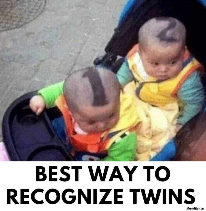 Best way to recognise twins meme