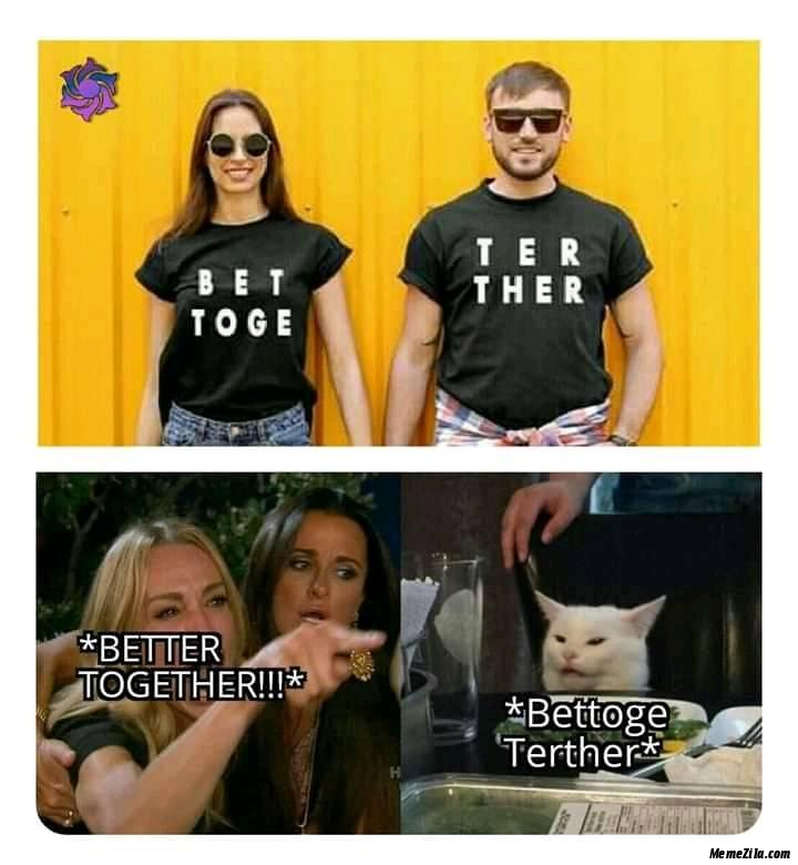 Better Together vs Bettoge Terther cat meme