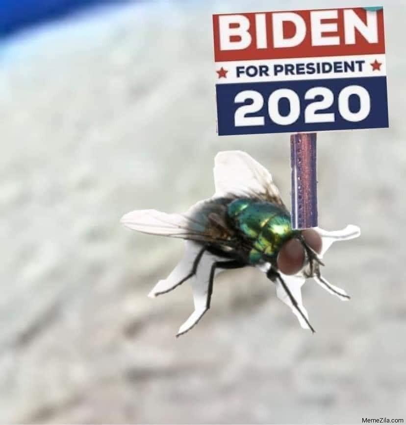 Biden for president 2020 meme