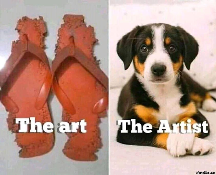 Bitten sleepers vs the dog meme