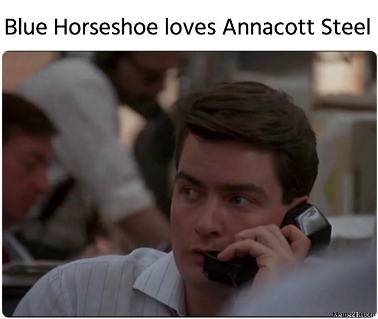 Blue Horseshoe loves Annacott Steel meme