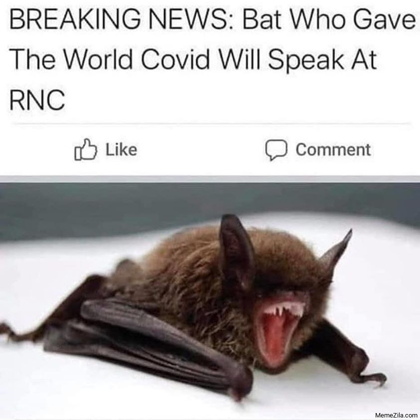 Breaking news The bat who gave the world covid will speak at RNC meme