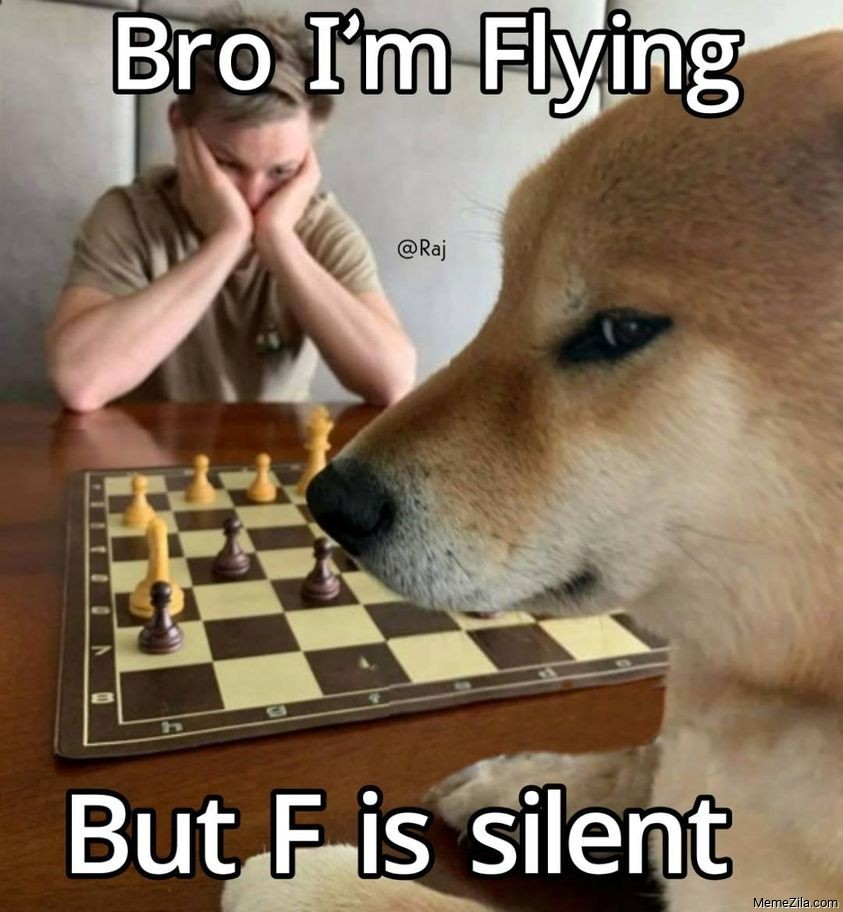 Bro Im flying but F is silent meme