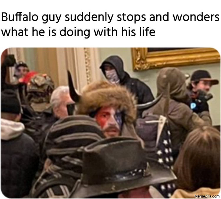 Buffalo guy suddenly stops and wonders what he is doing with his life meme