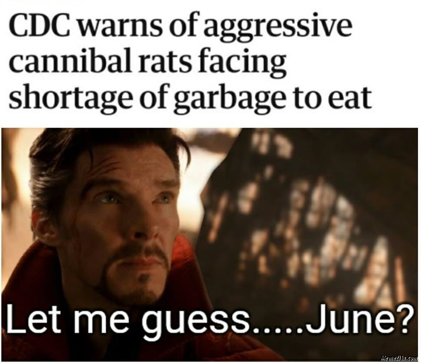 CDC warns of aggressive cannibal rats facing shortage of garbage to eat meme