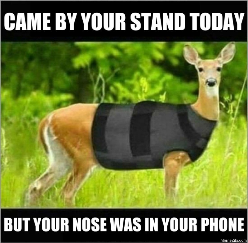 Came by your stand today but your nose was in your phone meme