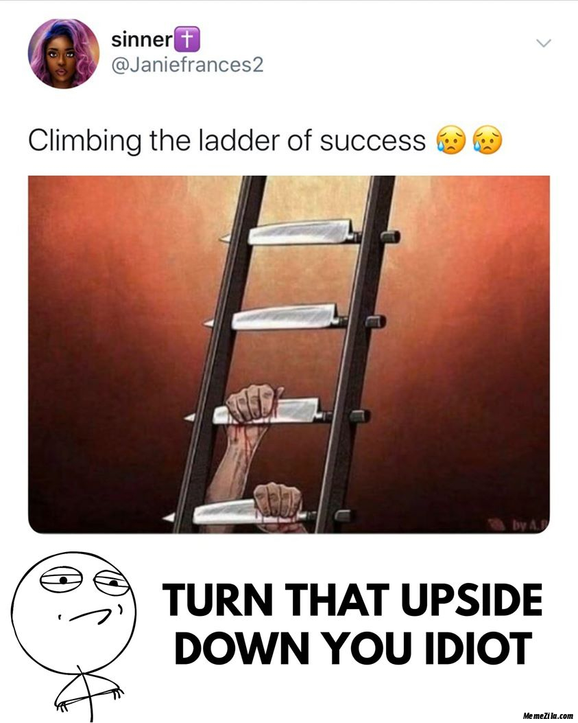 Climbing the ladder of success Turn that upside down you idiot meme