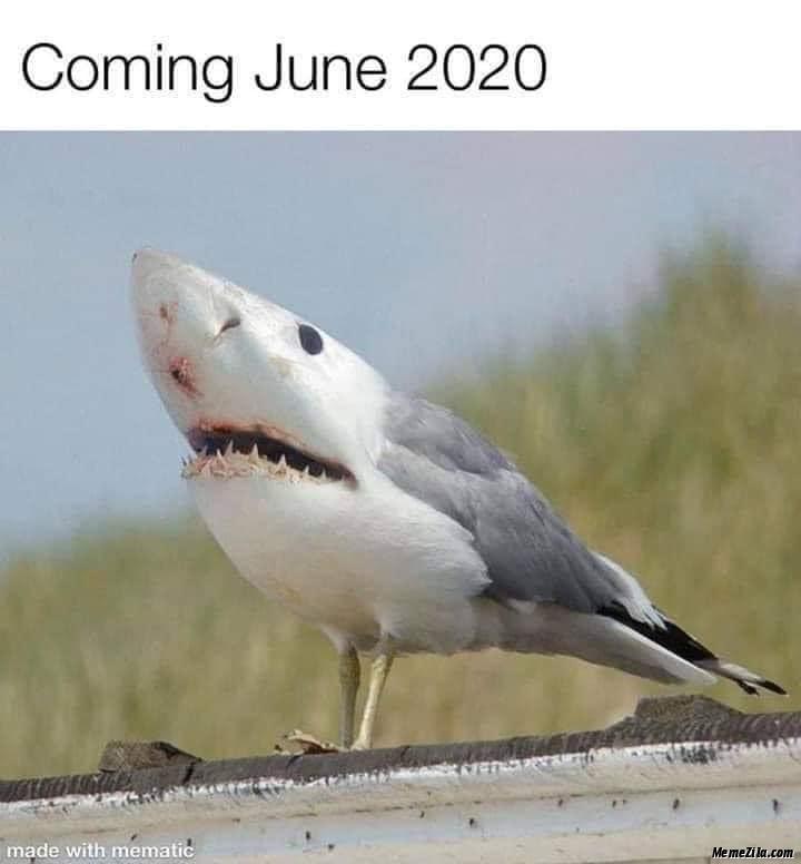 Coming june 2020