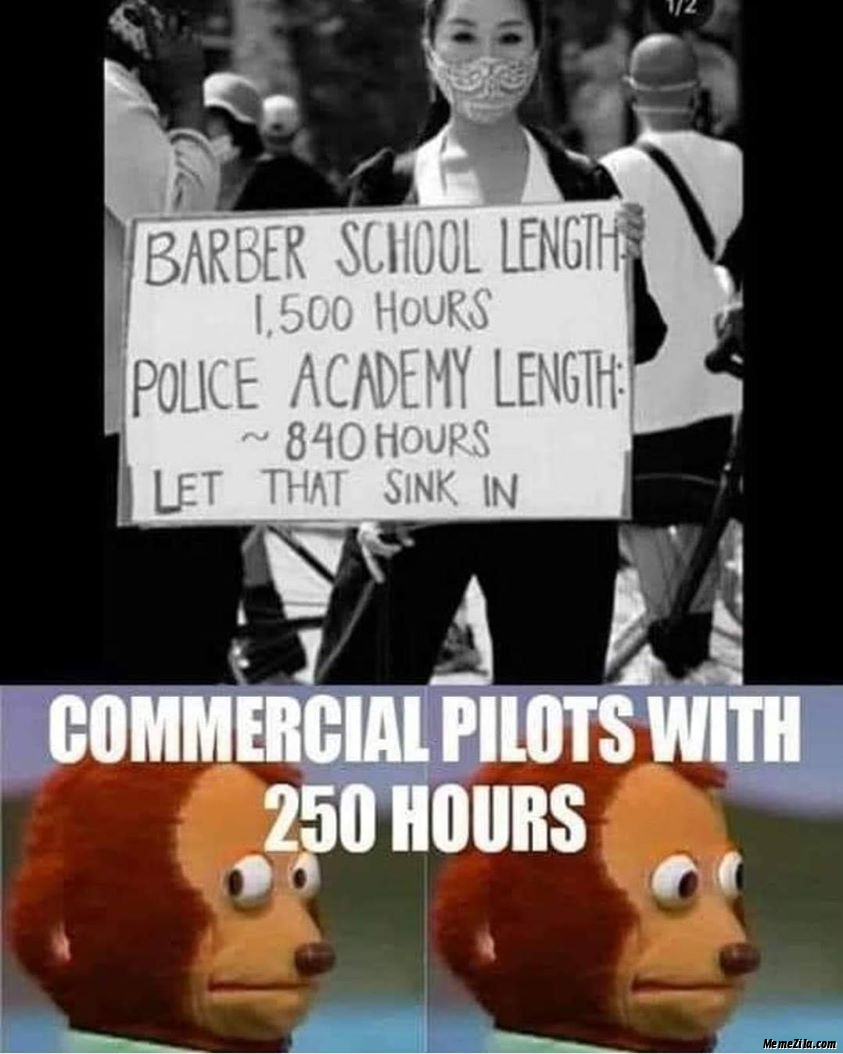 Commercial pilot with 250 hours meme