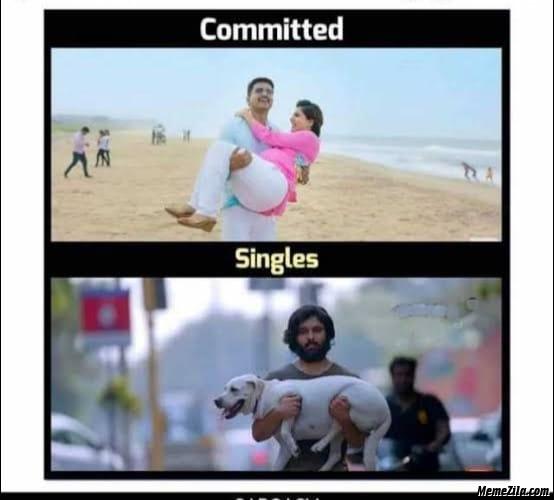 Committed vs singles meme
