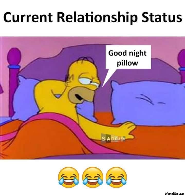 Current relationship status Good Night pillow meme