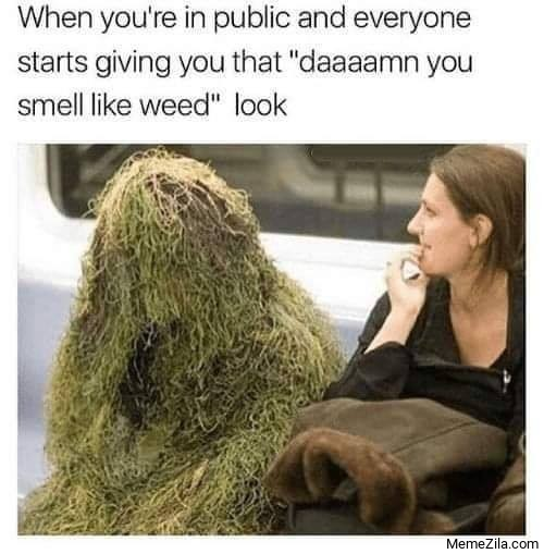 Damn you smell like weed meme