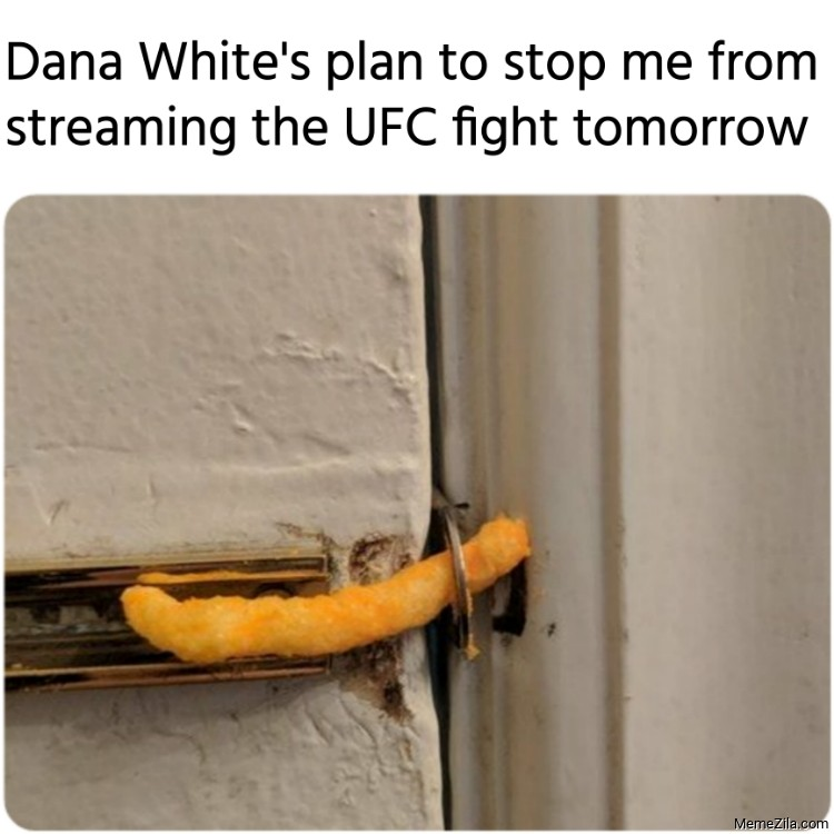 Dana Whites plan to stop me from streaming the UFC fight tomorrow meme