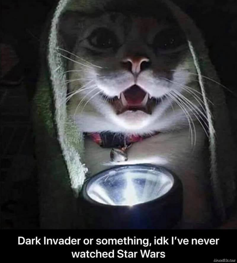 Dark invader or something idk I have never watched Star Wars meme