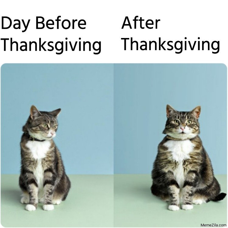 Day beford thanksgiving vs Day After thanksgiving meme