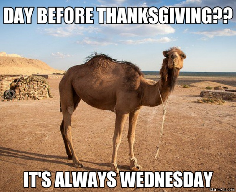 Day before thanksgiving Its always wednesday meme