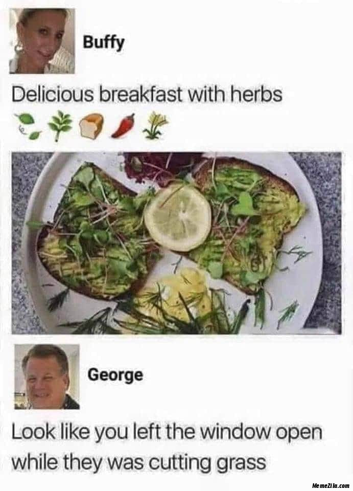 Delicious breakfast with herbs Look like you left the window open while they were cutting the grass meme