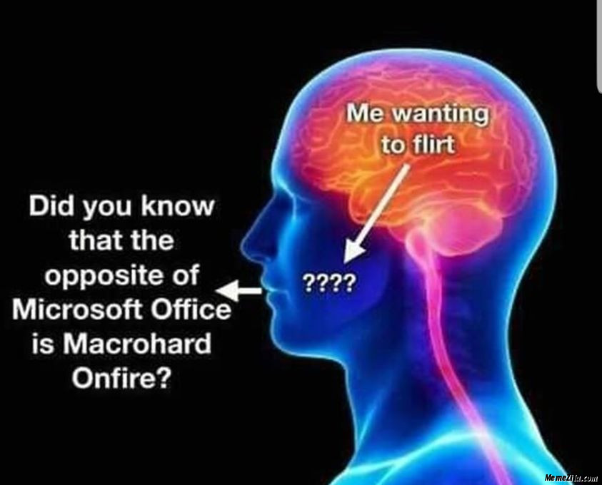 Did you know that the opposite of Microsoft office is Macrohard Onfire meme