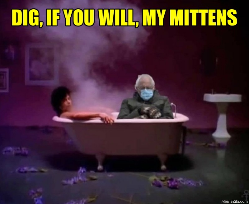 Dig if you will my mittens meme
