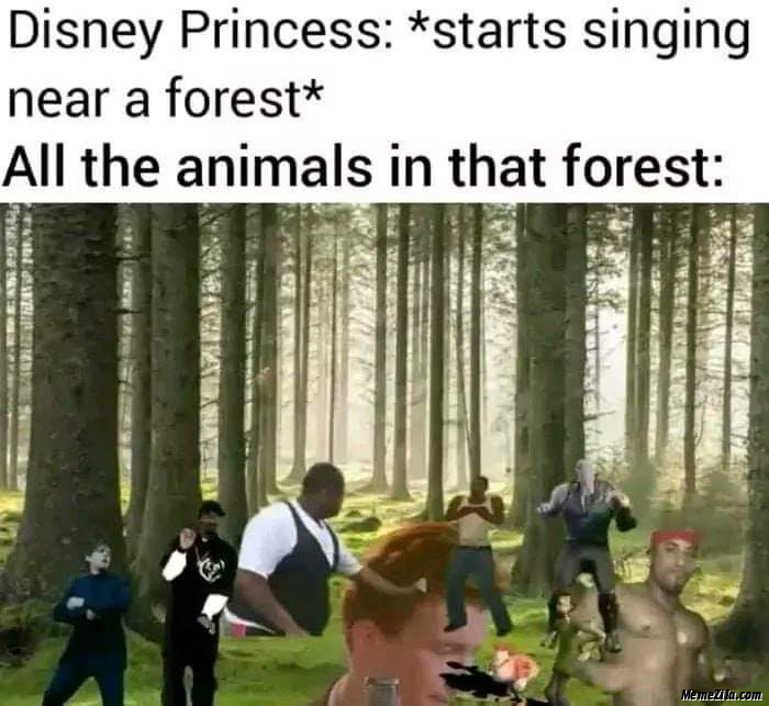 Disney princess starts singing near forest Meanwhile all the animals in that forest meme
