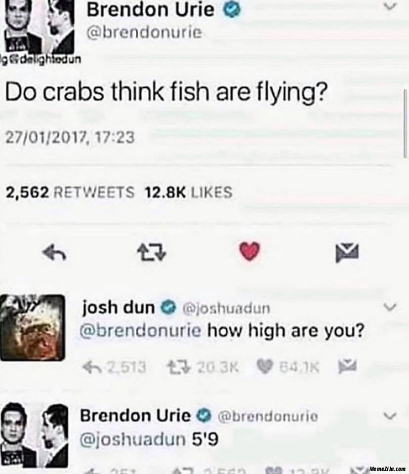 Do crabs think fish are flying meme