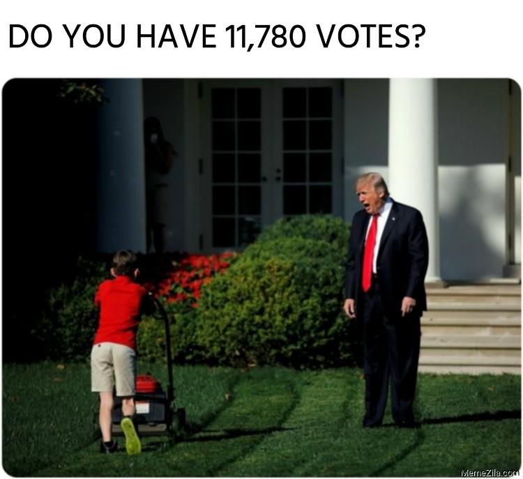 Do you have 11780 votes Trump meme