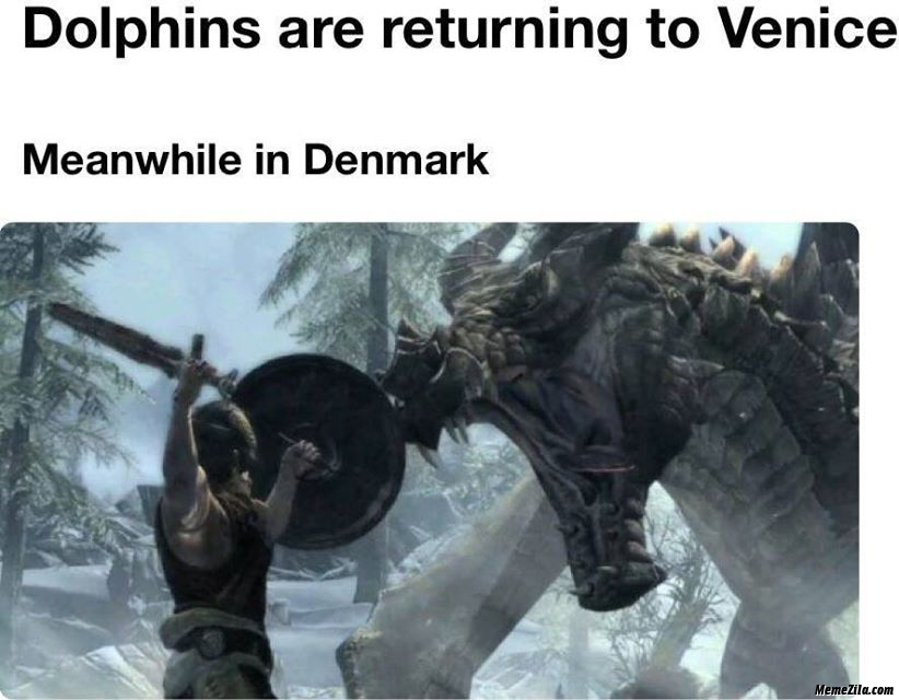 Dolphins are returning to Venice Meanwhile in Denmark meme