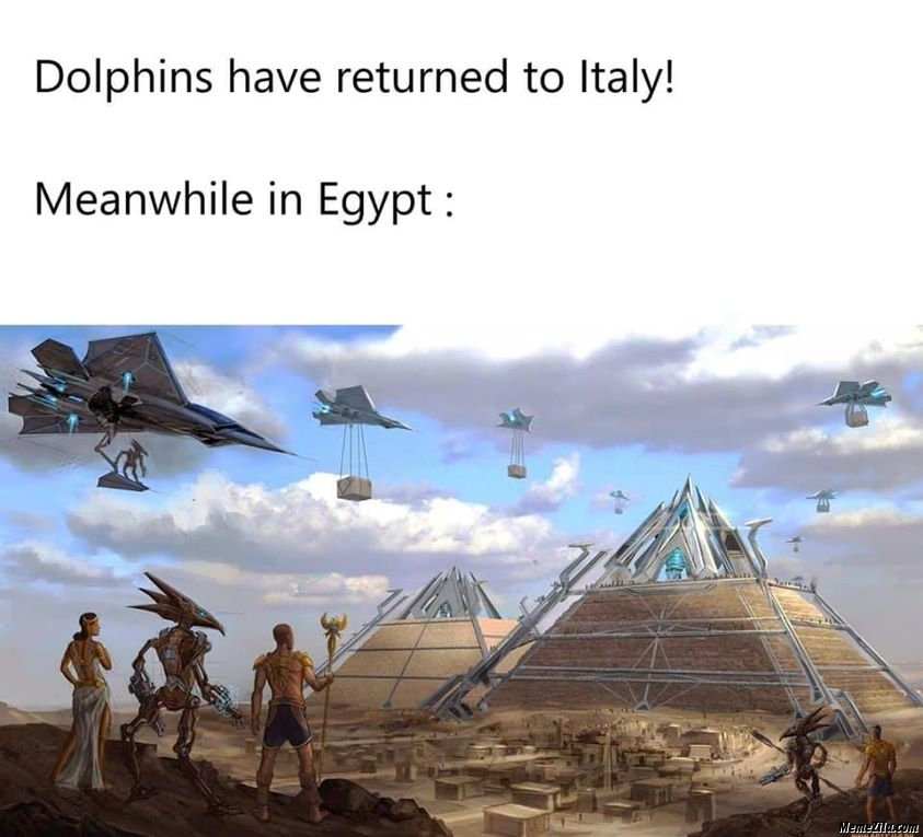 Dolphins have returned to italy Meanwhile in egypt meme